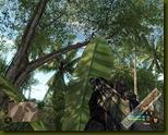 Crysis 2008-10-08 18-46-03-76