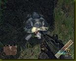 Crysis 2008-10-08 19-10-42-78