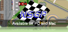 NSGP_BannerSmall