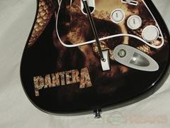 pantera15